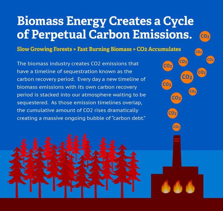 BiomassCarbonNeutral-Art