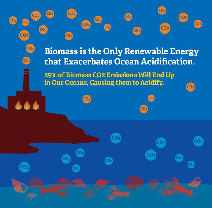 BiomassOA-Art