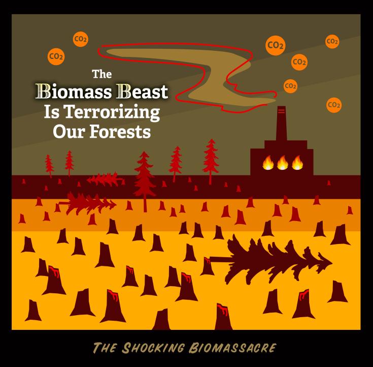 BiomassBeast
