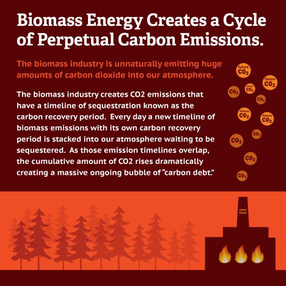 BiomassCarbonEmissions