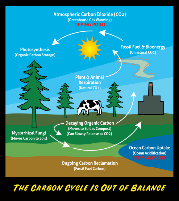 CO2Cycle